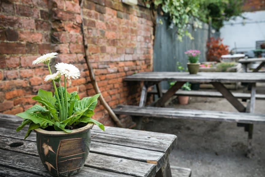 Wooden table foreground with flowerpot of white flowers on; behind and to the right more of a picnic style bench is visible. A brick wall runns behind both becoming a wooden fence in the distance top centre and right.